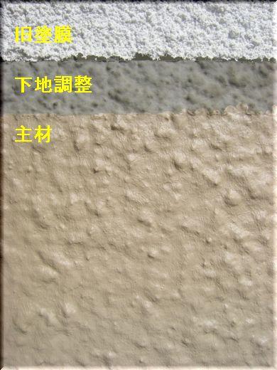ブログ用 002 20080305.jpg